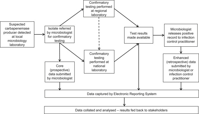 Enhanced surveillance of carbapenemase-producing Gram