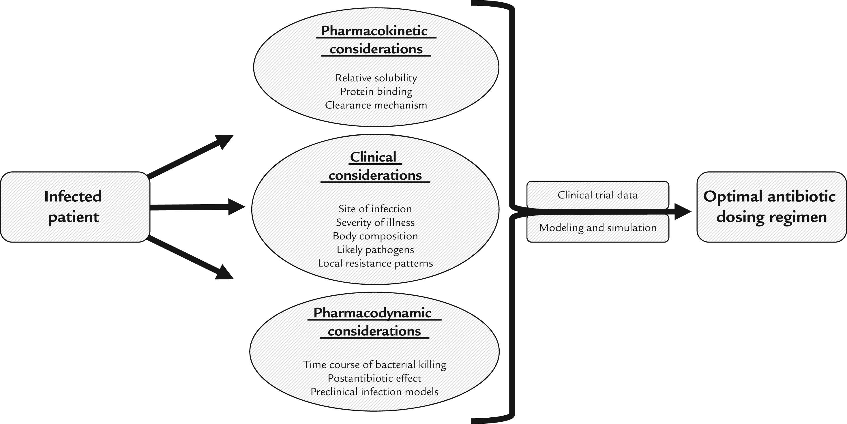 Pharmacokinetic and Pharmacodynamic Principles of Anti