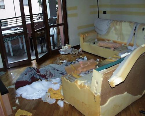 I cani che distruggono casa  Varie