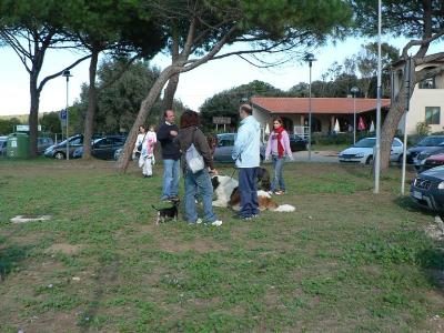 spiagge italiane aperte ai cani  Diritti degli animali
