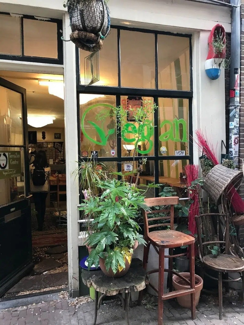 TerraZen Centre Top things to do this weekend in Amsterdam Clink Hostels