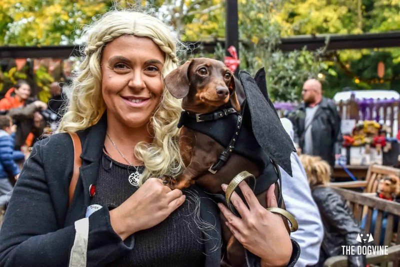 Halloween Dog Walk and Show | Best Places For Halloween in London