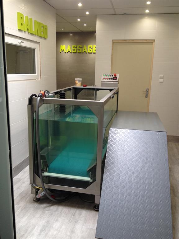 Physiotherapie Veterinaire Clinique Le 100 Beauvais