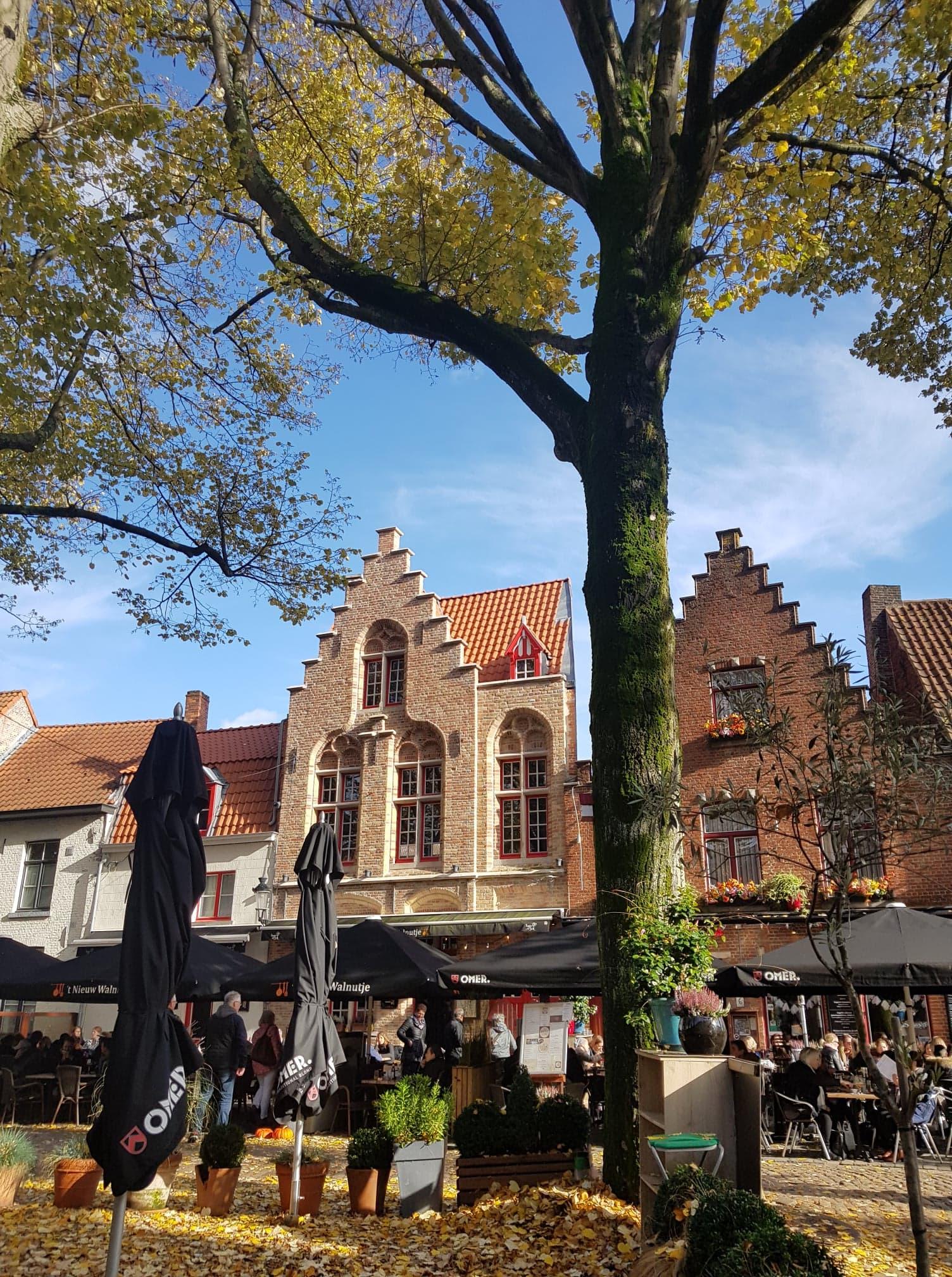 Bruges Belgique Clioandco blog voyage rue