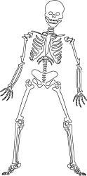 Halloween Coloring Pages and Craft Templates