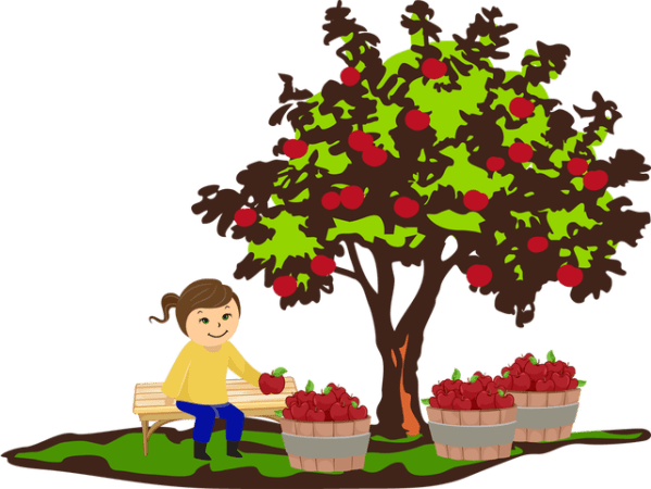 fall apple tree clip art - clipart