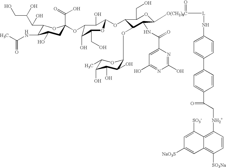 Lymphocyte Diagram