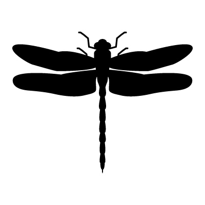 dragonfly vector - clipart