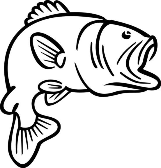 Free Bass Outline Cliparts Download Free Clip Art Free