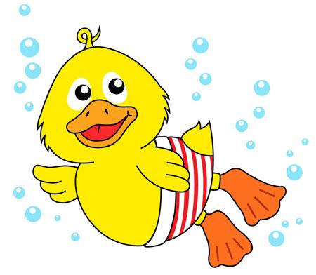 cartoon ducks swimming - clipart