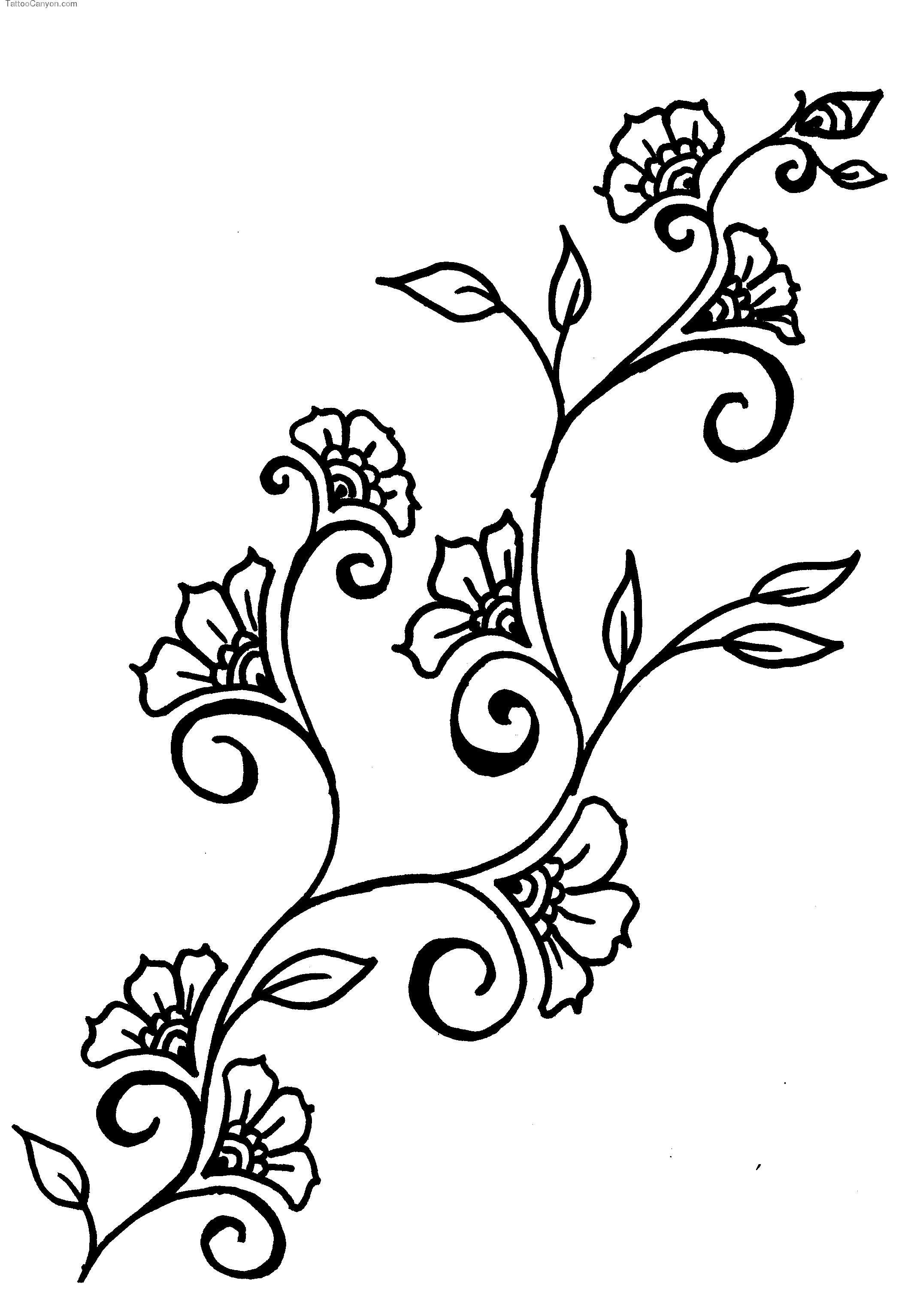 Images For Gt Flower Vine Drawing