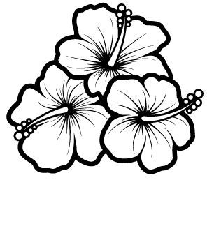 Hibiscus Flower Drawing ClipArt Best