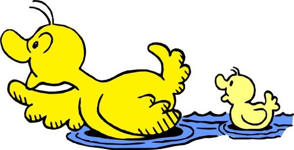 swimming duck clip art - clipart