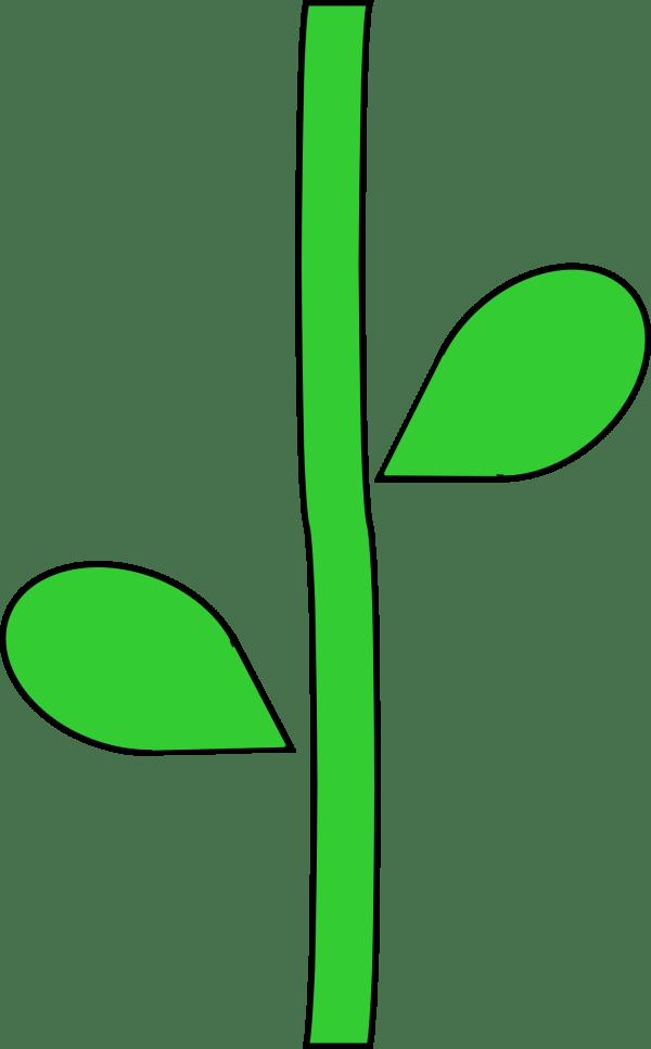 Flower with Stem Clip Art