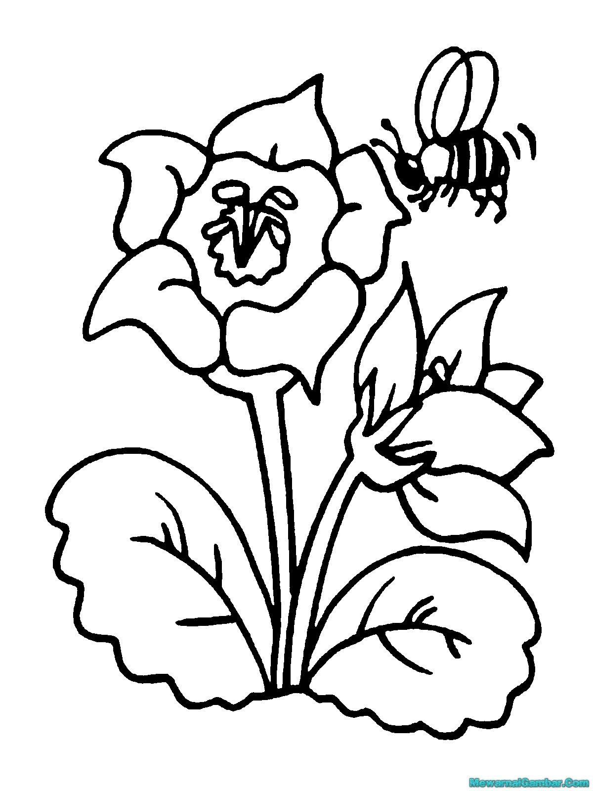 Gambar Mewarnai Kartun Download Buku Lebah Clipart