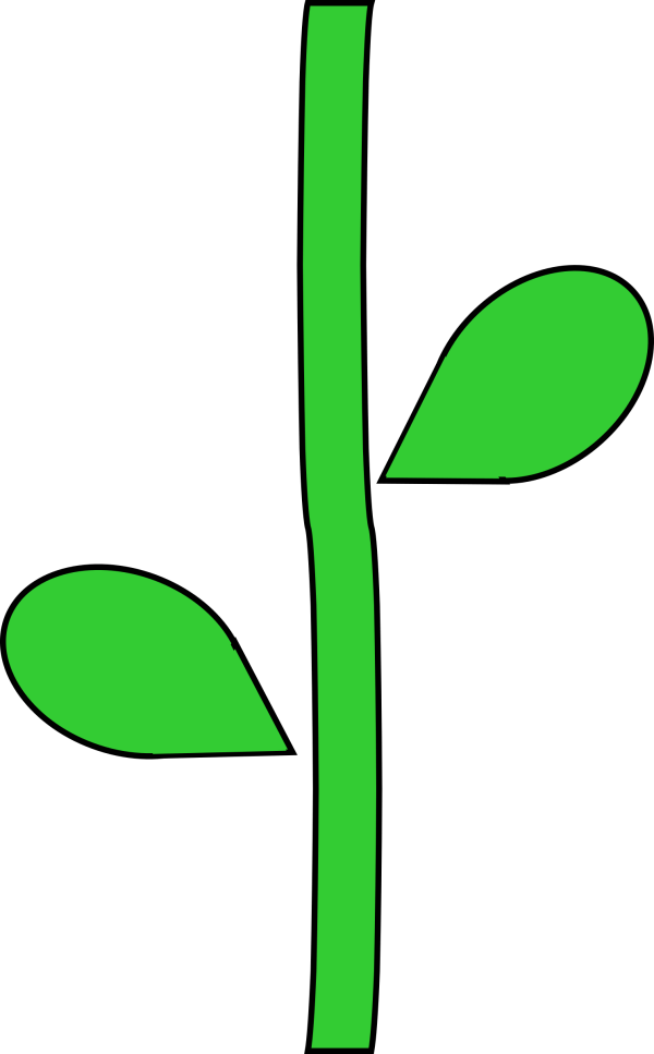 Flower With Stem Template - Clipart