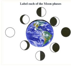 Phases Of The Moon Diagram To Label 1995 Ford Ranger Stereo Wiring Quiz - Clipart Best