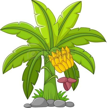 cartoon banana tree - clipart
