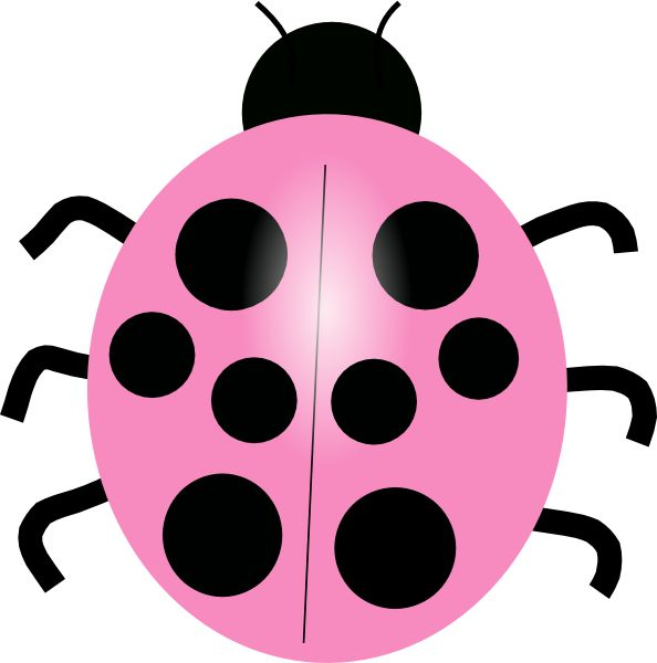 cute ladybugs - clipart