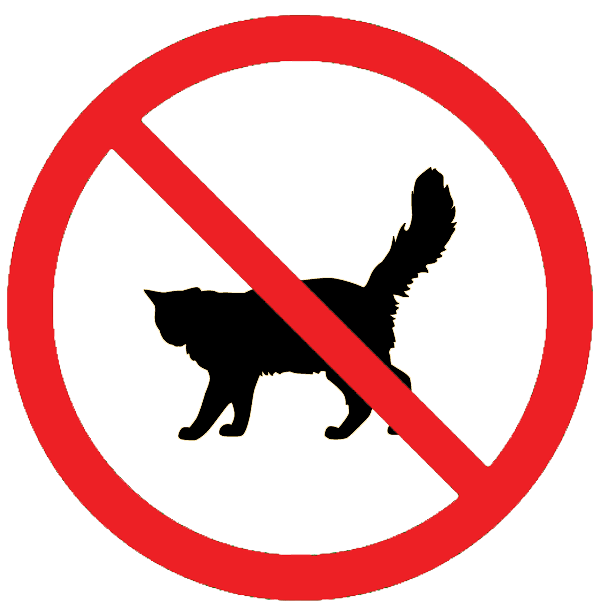 Image result for no cats allowed