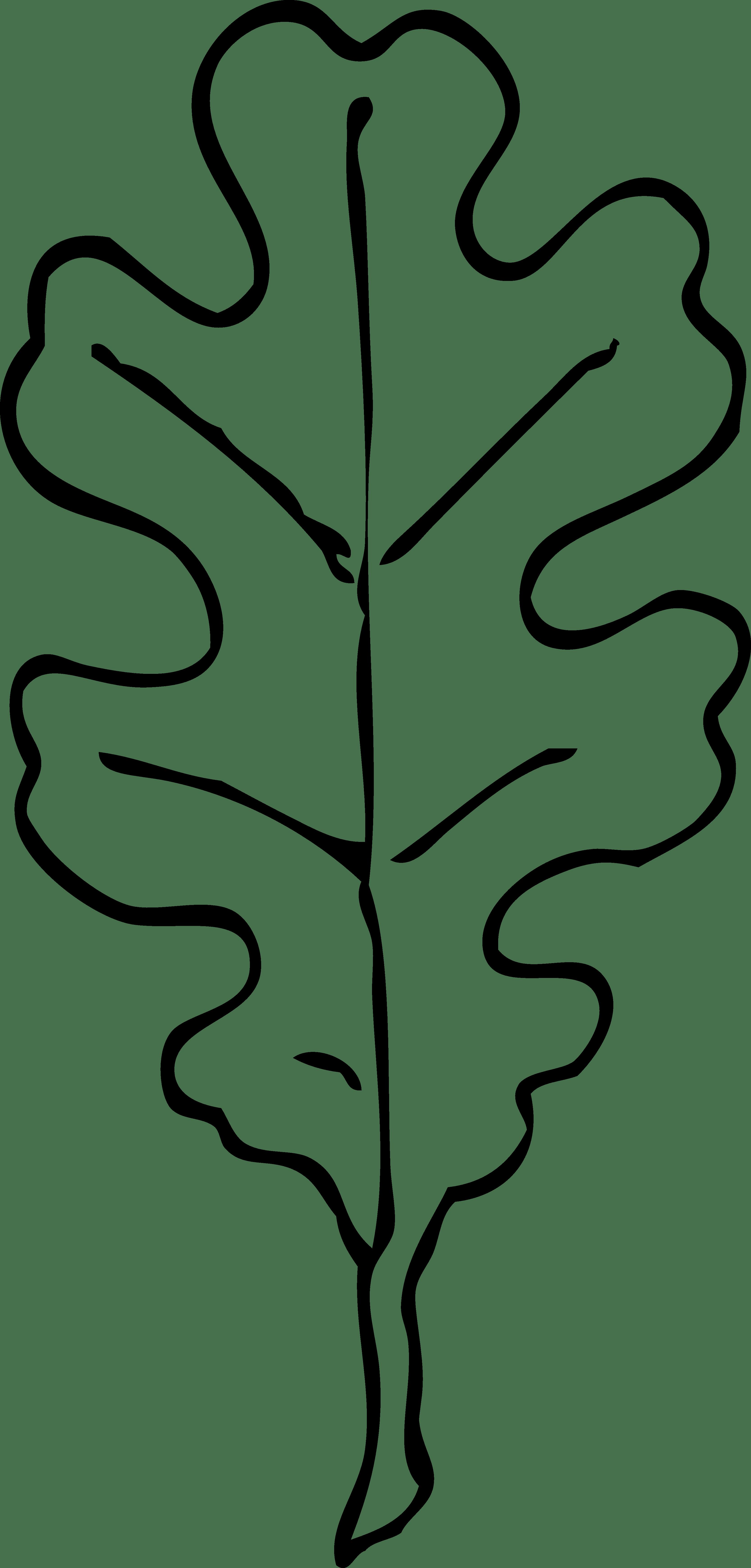 Autumn Leaf Outline Clip Art