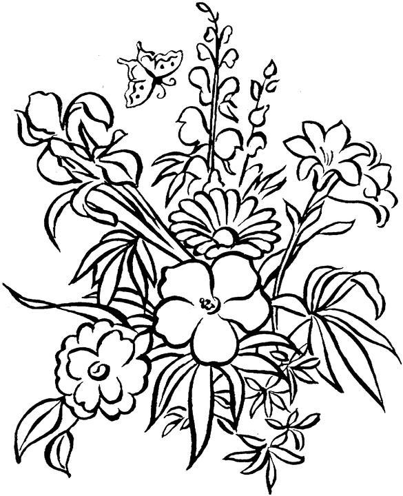 Tropical Rainforest Plants Printables Sketch Coloring Page