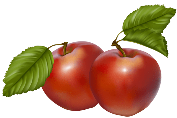 red apples - clipart