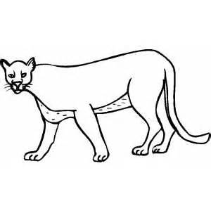 Cougar Paw Coloring Pages To Print Coloring Pages