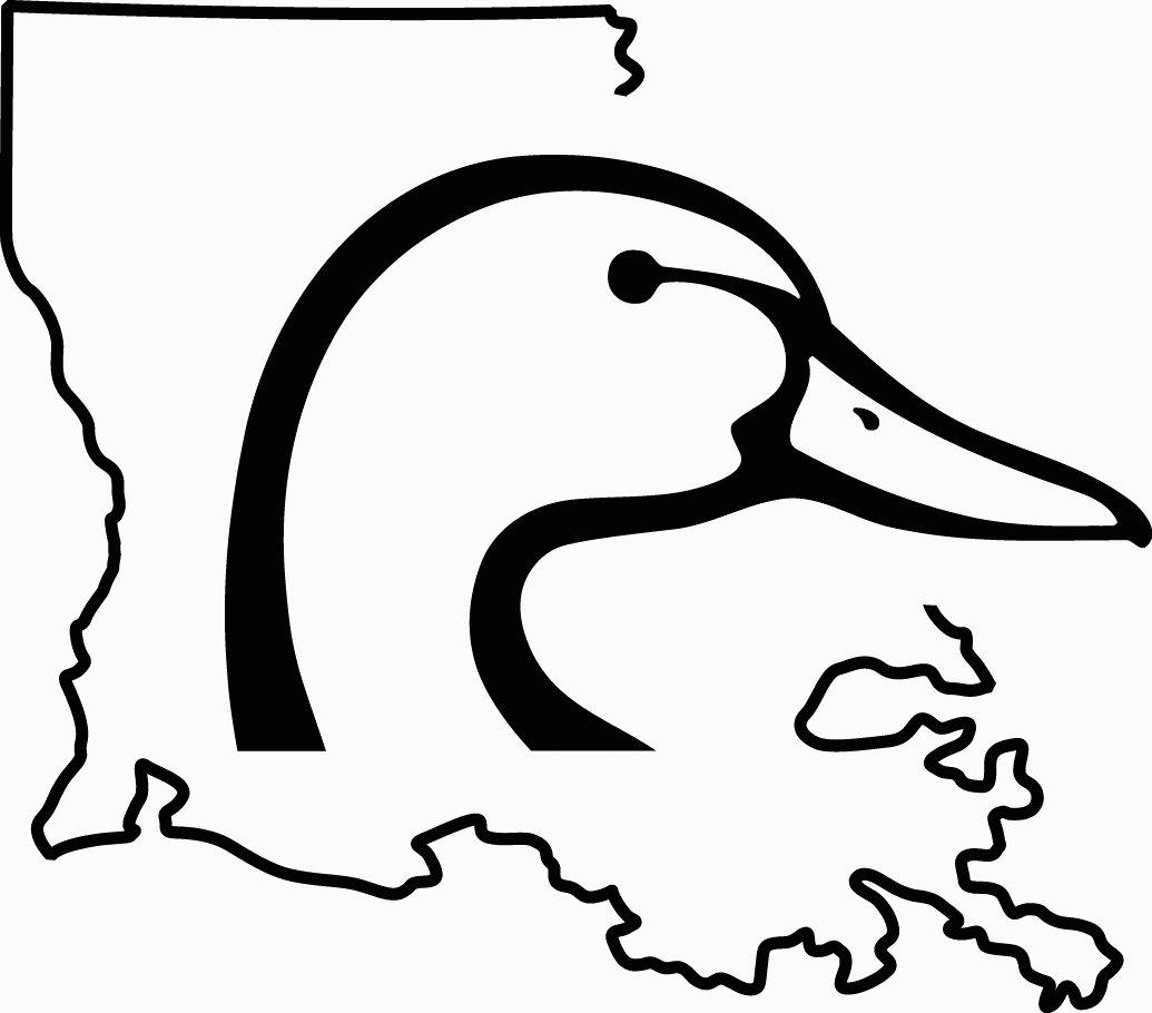 Vector Duck Head