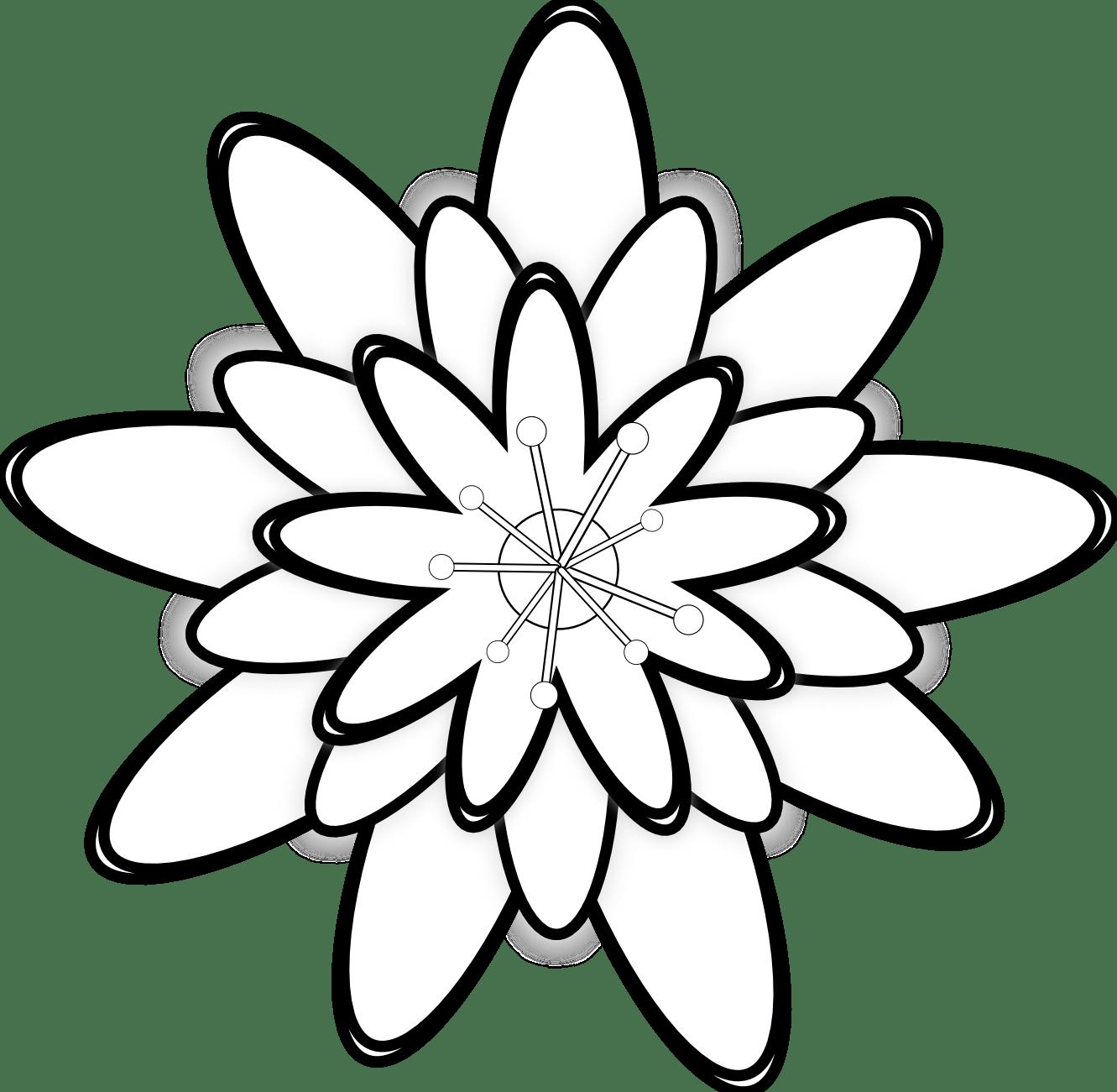 Gambar  Bunga  Teratai Kartun  Pickini