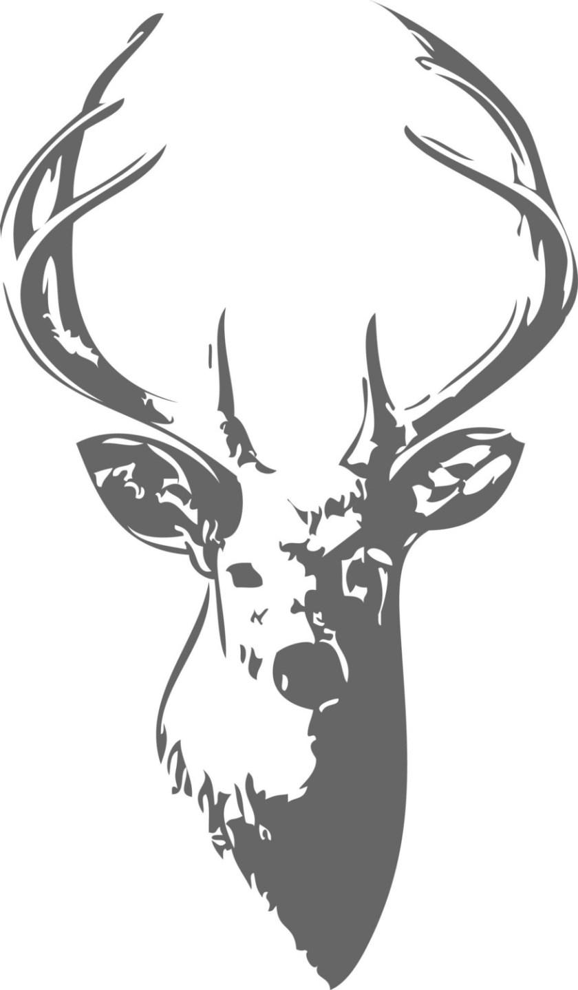 deer head art  clipart best
