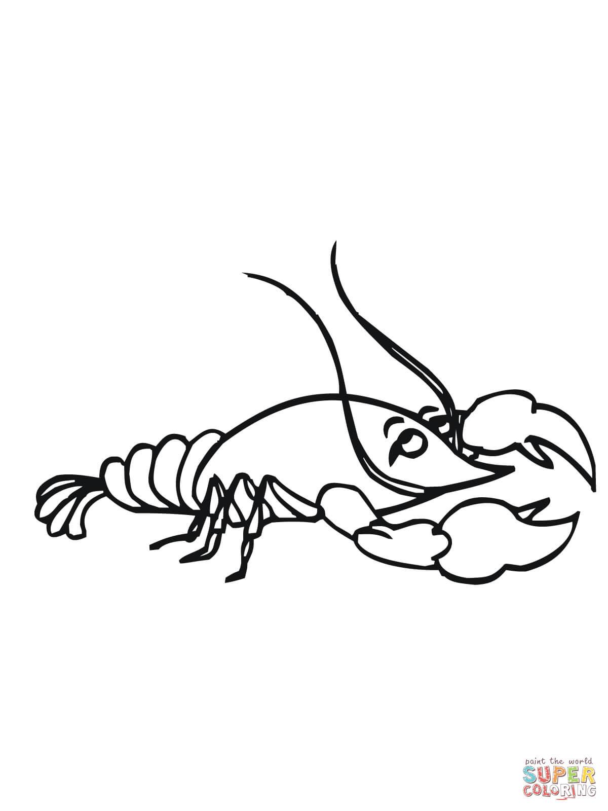 Crawfish Drawing