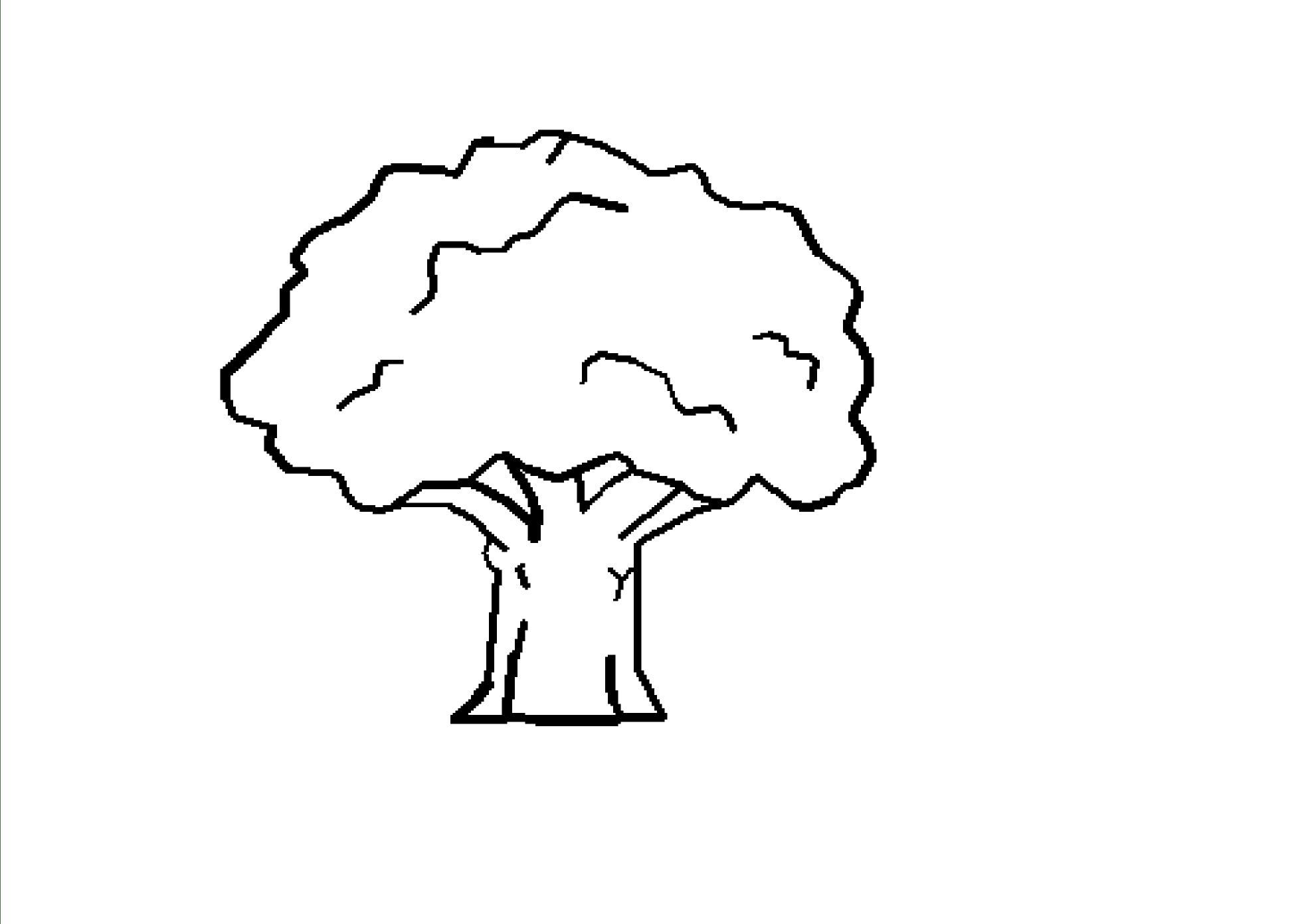 Oak Tree Cartoon Black And White