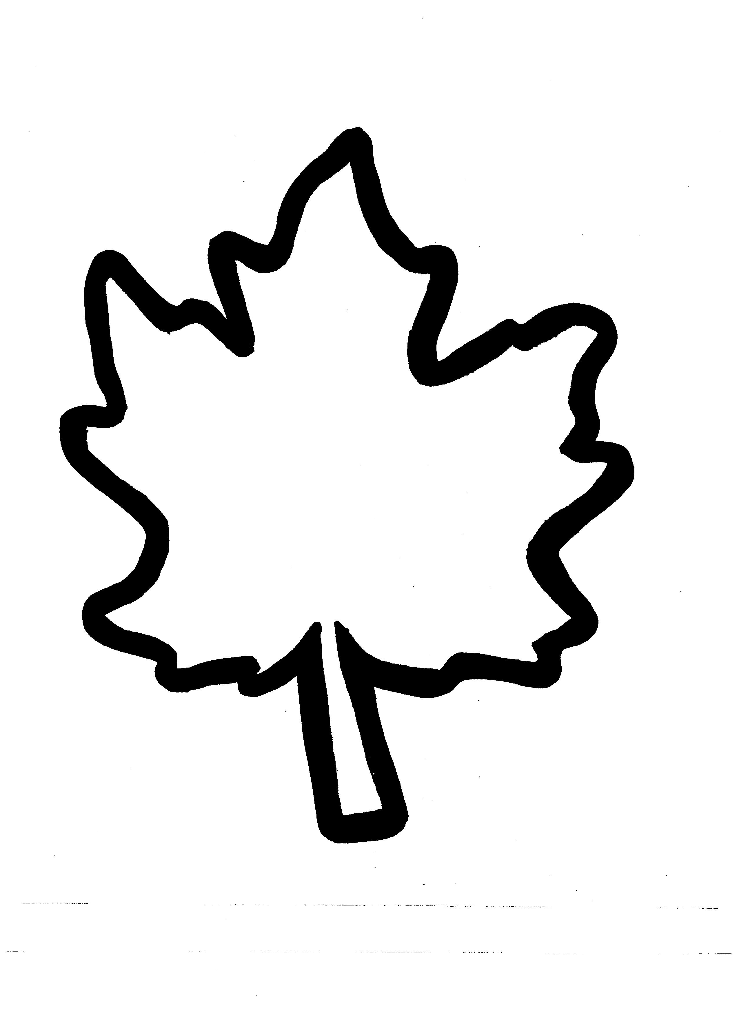Leaf Shape Templates