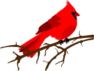 free clipart of cardinal bird