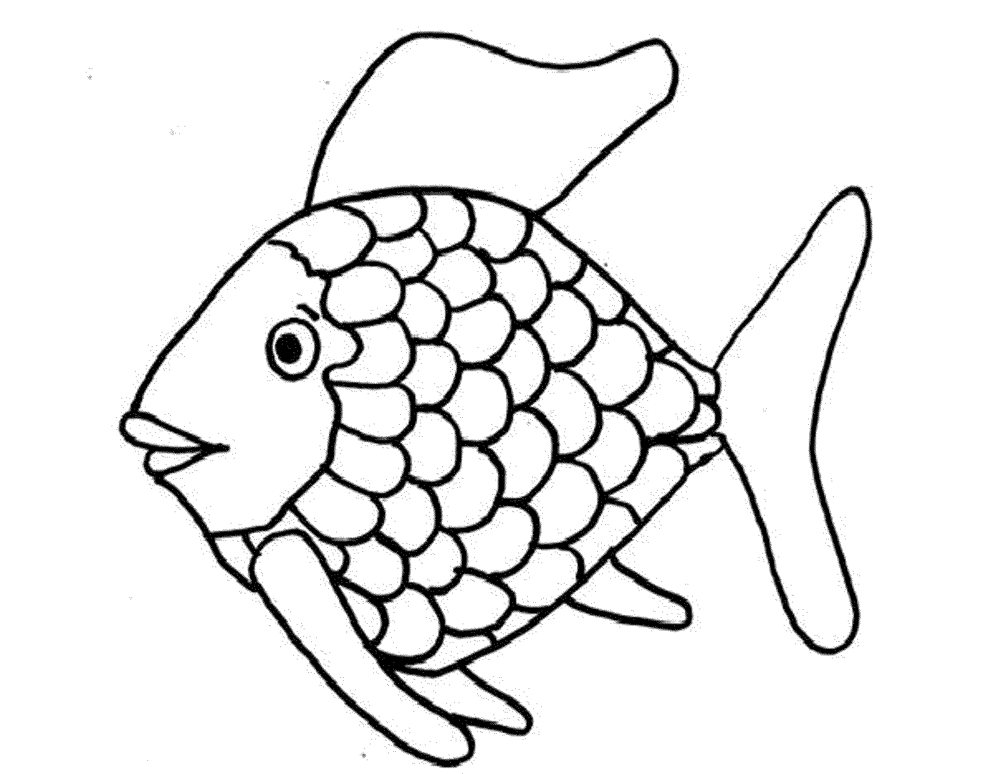 The Rainbow Fish Pattern