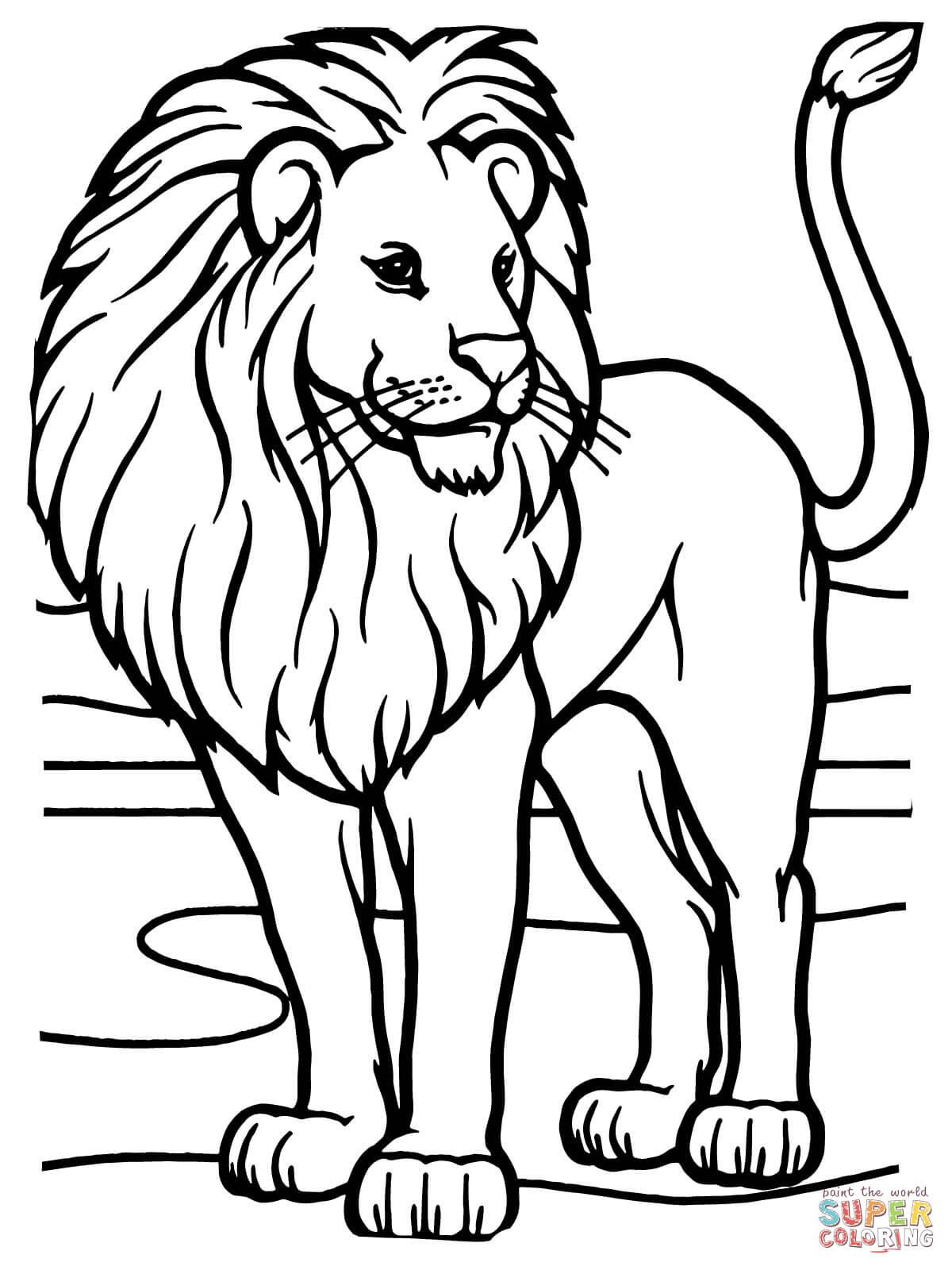 Cartoon Lion Outline
