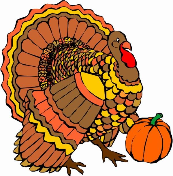 thanksgiving turkey - clipart