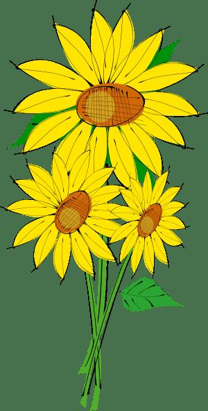 sunflowers clip art free vector