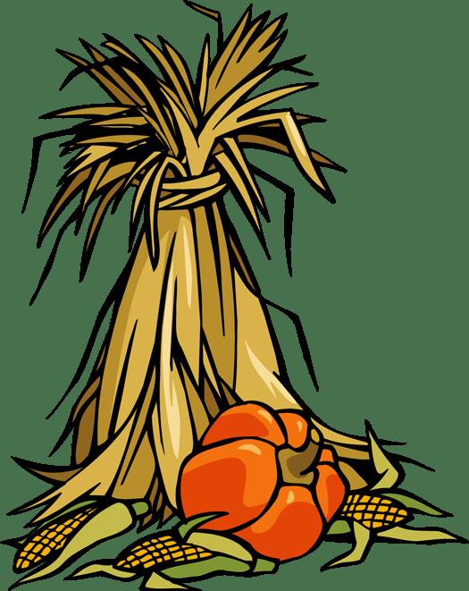 cornstalks and pumpkins - clipart