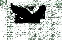 Flying Bird Silhouette - ClipArt Best