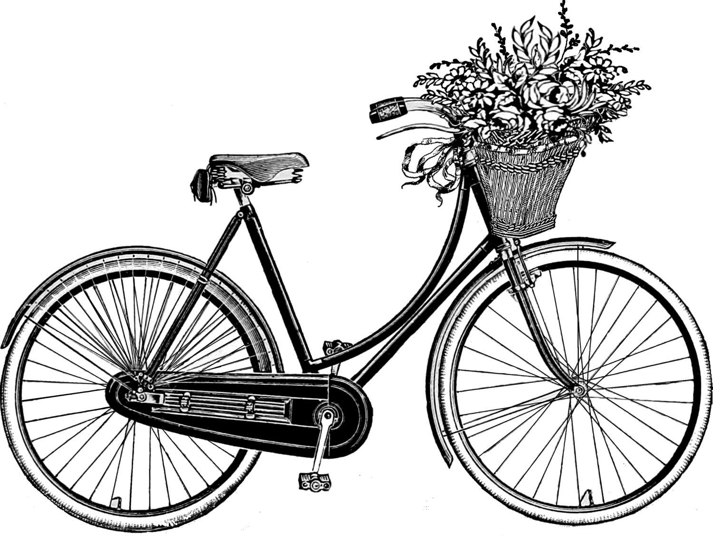 Drawing Bicycle