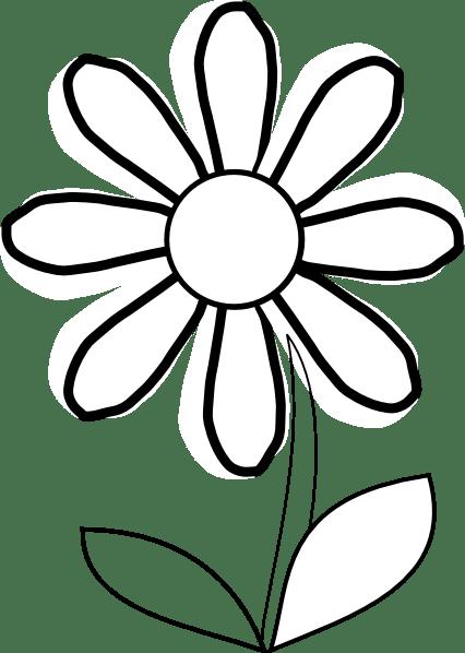 outline of sunflower - clipart