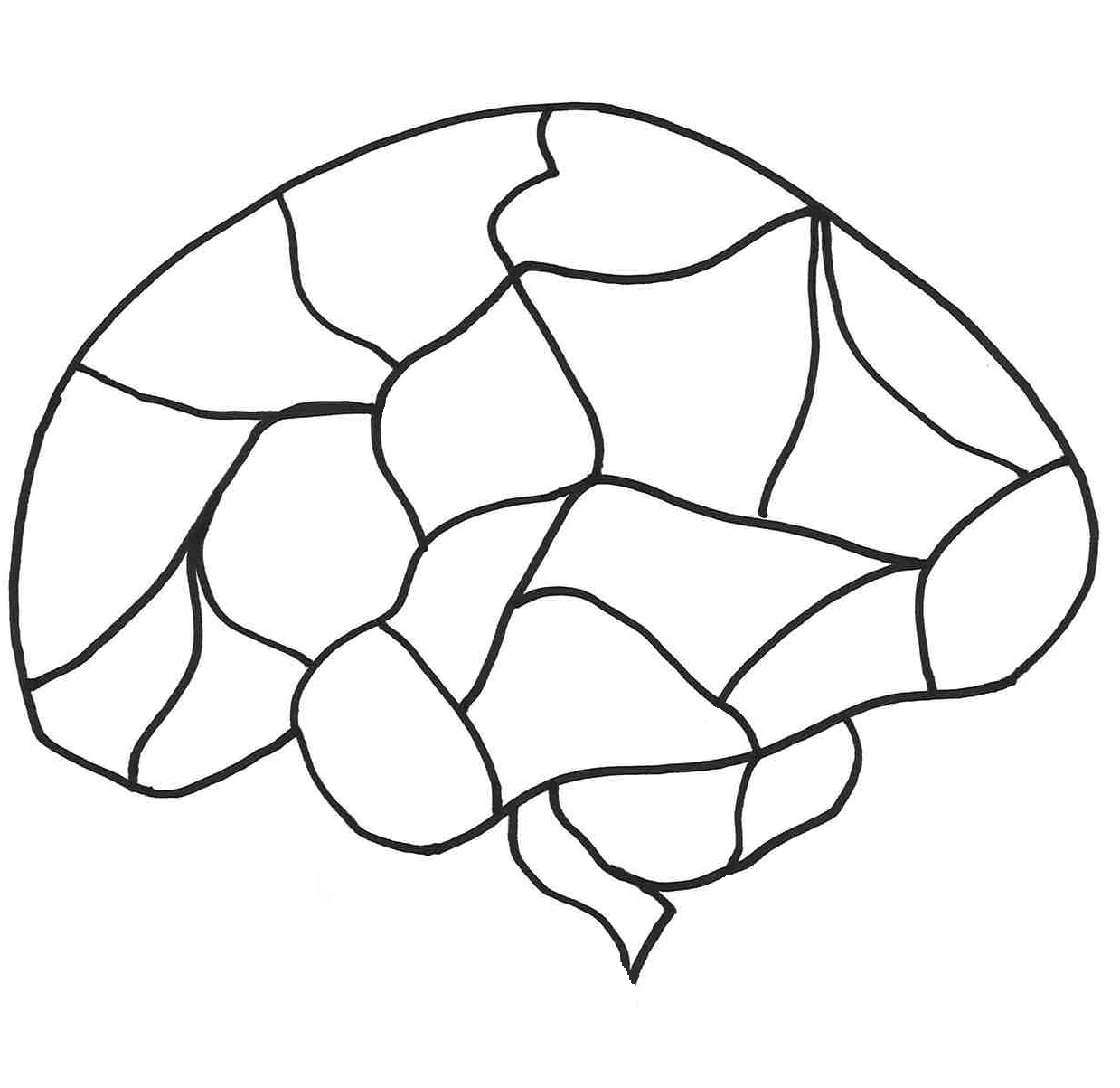 Brain Blank Diagram