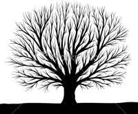 Cool Tree Silhouettes - ClipArt Best