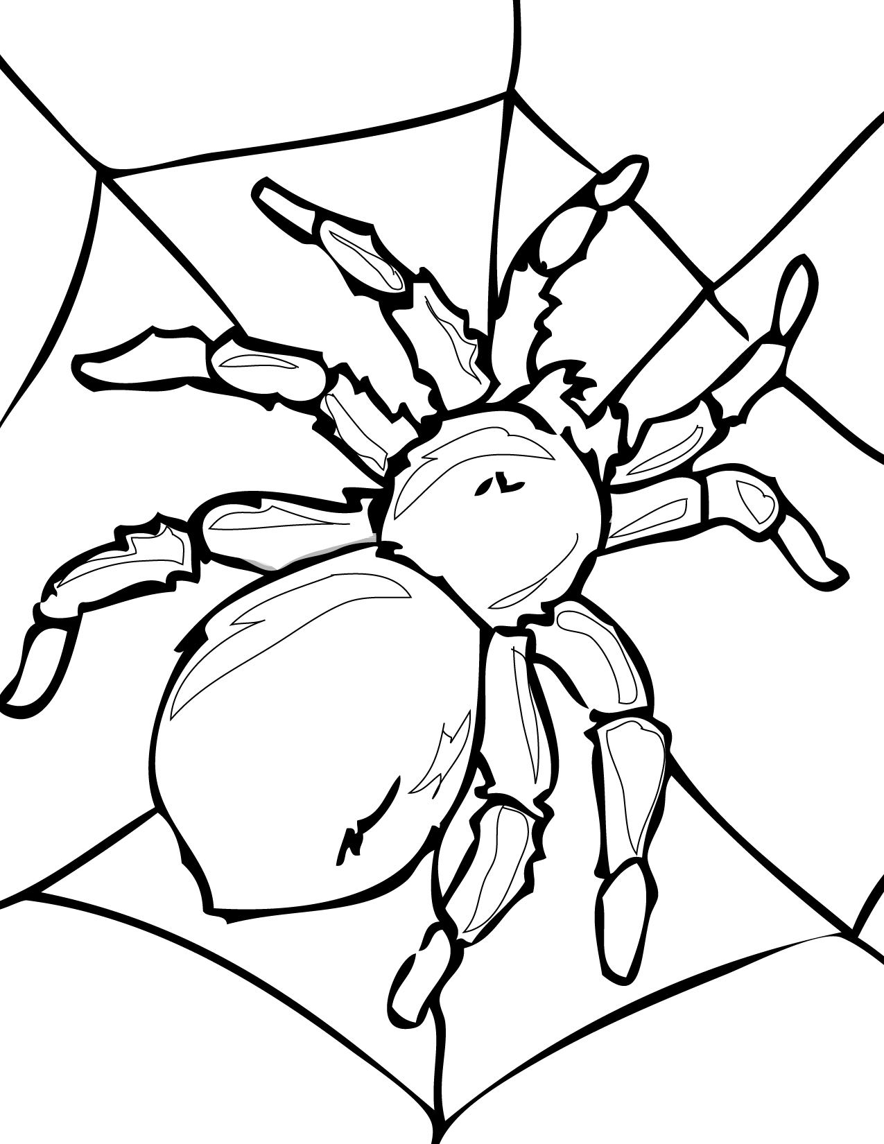 Outline Of A Spider