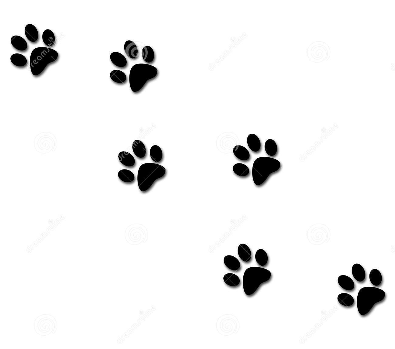 Cat Paw Stencil