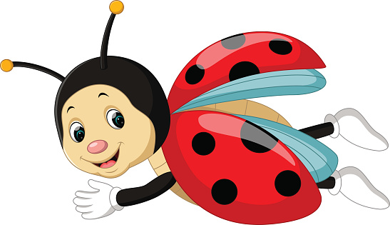 lady bug cartoobn - clipart