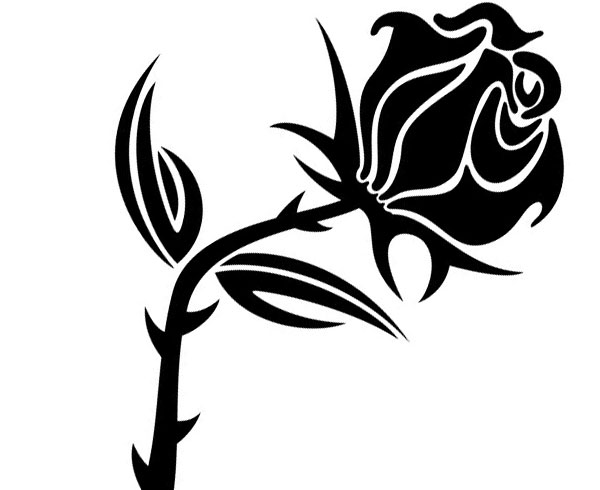 White Rose Clipart Flower Drawing