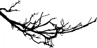 Tree Branch Silhouette - ClipArt Best